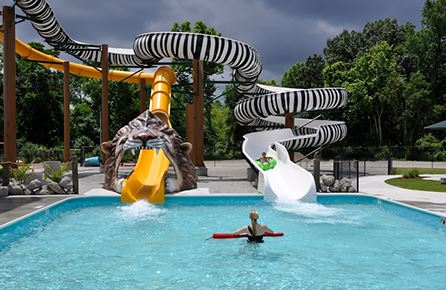 Zebra and Lion water slides and landing pool